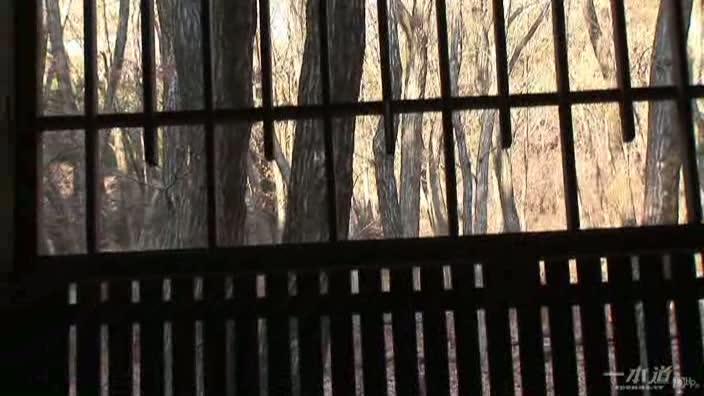 グラドル vol.041 デカサン 初バイブ娘【稲森あゆみ】