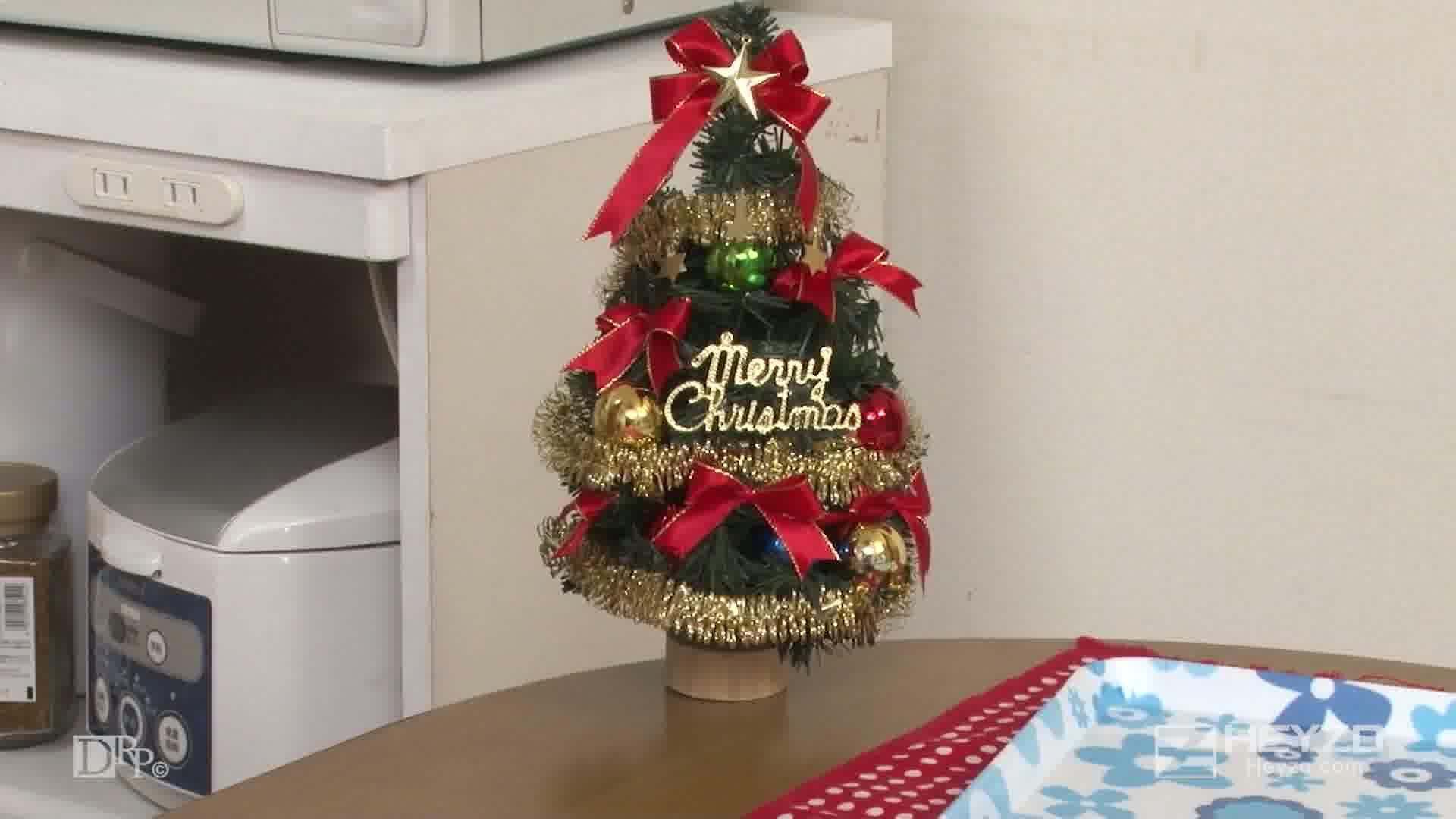 性夜のクリスマスに舞い降りたサンタガール - まりか【料理 フェラ抜き サンタ服 バイブ】