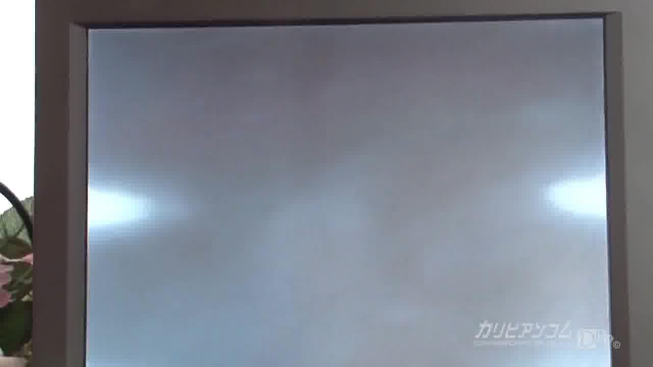 カリビアン・ダイヤモンド Vol.1 - 阿利希カレラ【バイブ・ギャル・中出し】