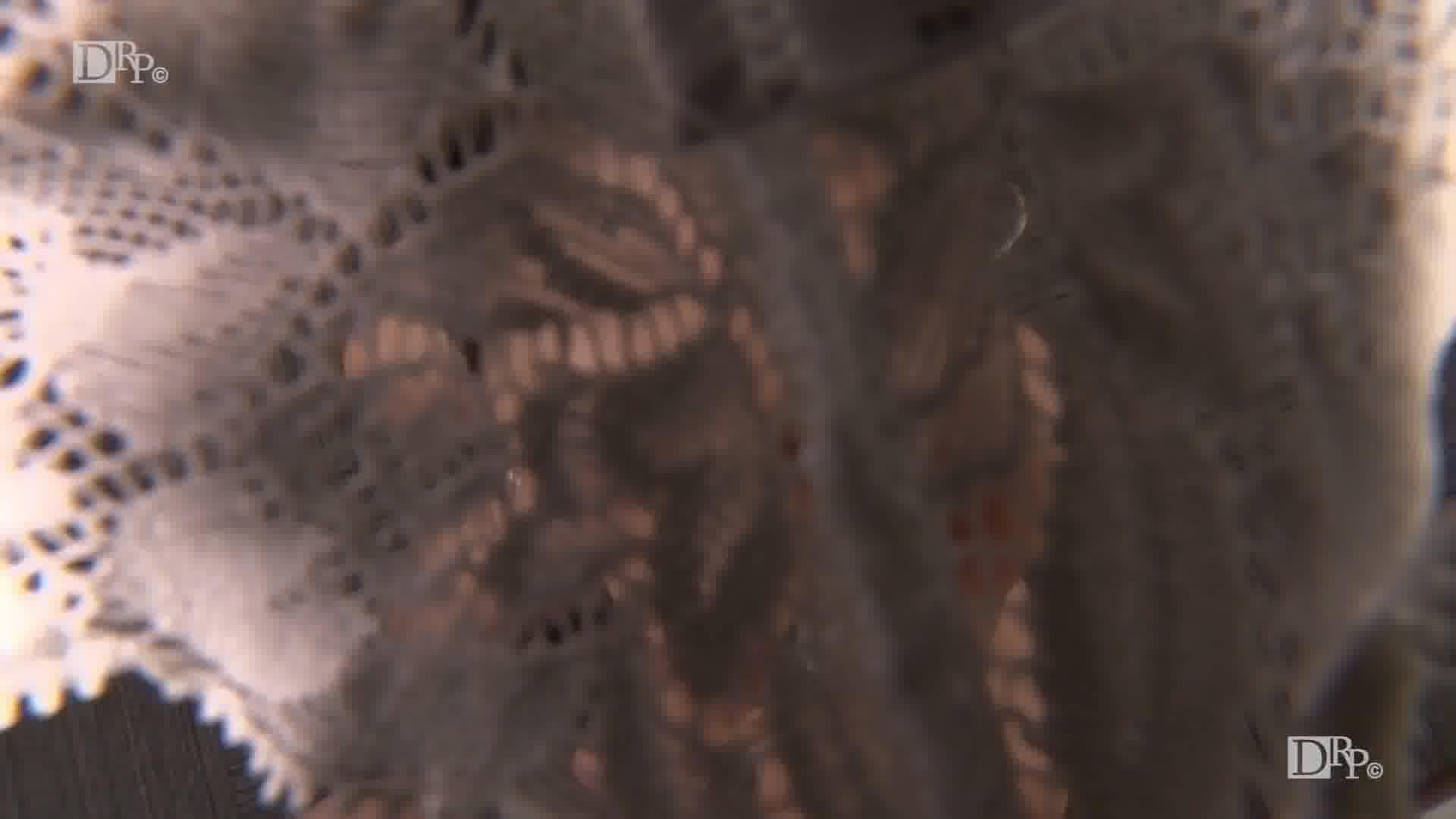 THE 未公開 ~パイパン熟女のディープキスと放尿娘~ - 北島玲【パイパン・放尿・オナニー】